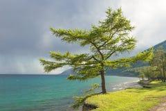 Lago Baikal Imagem de Stock Royalty Free