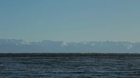 Lago Baikal Cime della montagna dall'altro lato Fondo blu calmo perfetto collegato archivi video