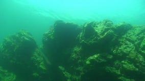 Lago Baikal subacuático almacen de video