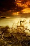 Lago Balaton Fotografie Stock Libere da Diritti