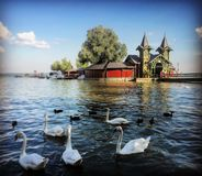 Lago Balaton imagem de stock royalty free