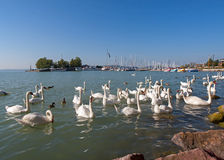 Lago Balaton, Hungria imagens de stock