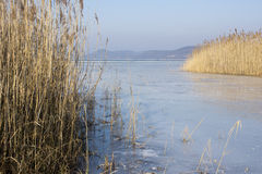 Lago Balaton no inverno imagens de stock royalty free