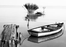 Lago Balaton (Szigliget) Imagem de Stock Royalty Free