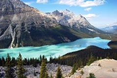 Lago Banff Peyto imagen de archivo libre de regalías