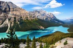 Lago Banff Peyto fotografía de archivo libre de regalías
