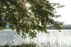Lago banyoles Foto de archivo libre de regalías