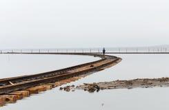 Lago Baskunchak en Rusia fotografía de archivo libre de regalías