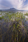 Lago Batur Bali - Indonésia Imagem de Stock Royalty Free
