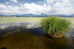 Lago in Baviera Immagini Stock Libere da Diritti