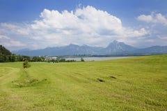 Lago in Baviera Immagini Stock