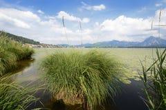 Lago in Baviera Fotografia Stock Libera da Diritti