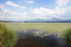 Lago in Baviera Fotografia Stock