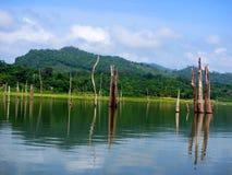 Lago Bayano Panamá Fotografia de Stock Royalty Free