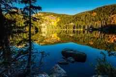 Lago bear Imagens de Stock