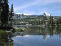 Lago bear Imagen de archivo libre de regalías