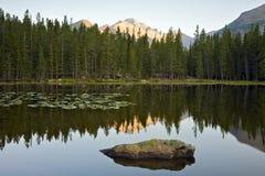 Lago bear ad alba immagini stock