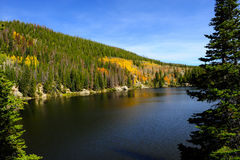 Lago bear na queda fotografia de stock royalty free
