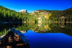 Lago bear no alvorecer Fotos de Stock Royalty Free
