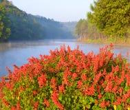 Lago beauty Imágenes de archivo libres de regalías