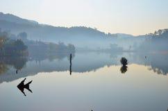 Lago beauty Foto de archivo libre de regalías