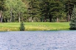 Lago Beauvert imagenes de archivo