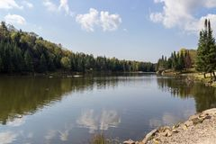 Lago beaver in Parc Omega Canada immagini stock