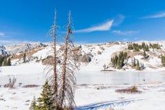 Lago Bellamy congelado encima Imagen de archivo libre de regalías