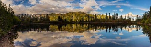 Lago bench, Mt Rainier National Park fotografía de archivo libre de regalías