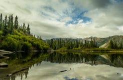 Lago bench, Mt Rainier National Park fotos de archivo
