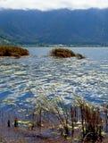 Lago Beratan em Bedugul - Bali 013 Fotos de Stock Royalty Free