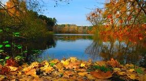 Lago Bezdonnoye nel parco nazionale di Serebryany Bor, Mosca, Russia Fotografia Stock Libera da Diritti