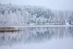 Lago Bijote, parco regionale di Kurtuvenai immagini stock libere da diritti