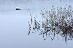 Lago Bijote, parque regional de Kurtuvenai imagem de stock royalty free