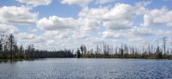 Lago Billys, riserva del cittadino della palude di Okefenokee fotografie stock