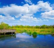 Lago blanco en el parque de Cullinan en el sugarland Tejas imagenes de archivo
