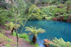 Lago blu alle caverne di Jenolan fotografie stock libere da diritti
