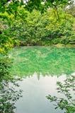Lago blu circondato dalle querce Immagine Stock Libera da Diritti