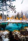 Lago blu fantastico del geyser nella foresta Altai, Russia di autunno fotografia stock