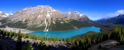 Lago blu luminoso Peyto su una mattina di estati Fotografie Stock Libere da Diritti