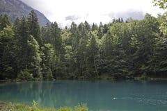 Lago blu mountain vicino a Kandersteg Fotografie Stock Libere da Diritti