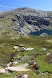 Lago blu, parco nazionale di Kosciuszko, NSW Australia Fotografia Stock