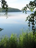 Lago blu, pianta verde ed alberi Immagine Stock Libera da Diritti