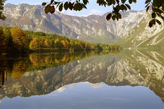 Lago Bohinj Fotografie Stock Libere da Diritti