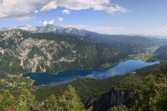 Lago Bohinj Immagine Stock