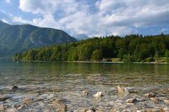 Lago Bohinj fotografía de archivo