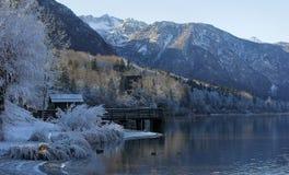 Lago Bohinj Fotografía de archivo libre de regalías