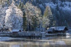 Lago Bohinj Fotografia Stock