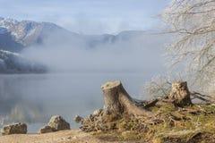 Lago Bohinj Imágenes de archivo libres de regalías