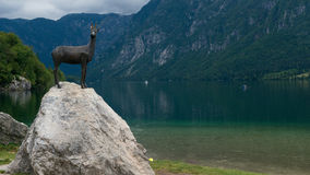 Lago Bohinj Fotografie Stock